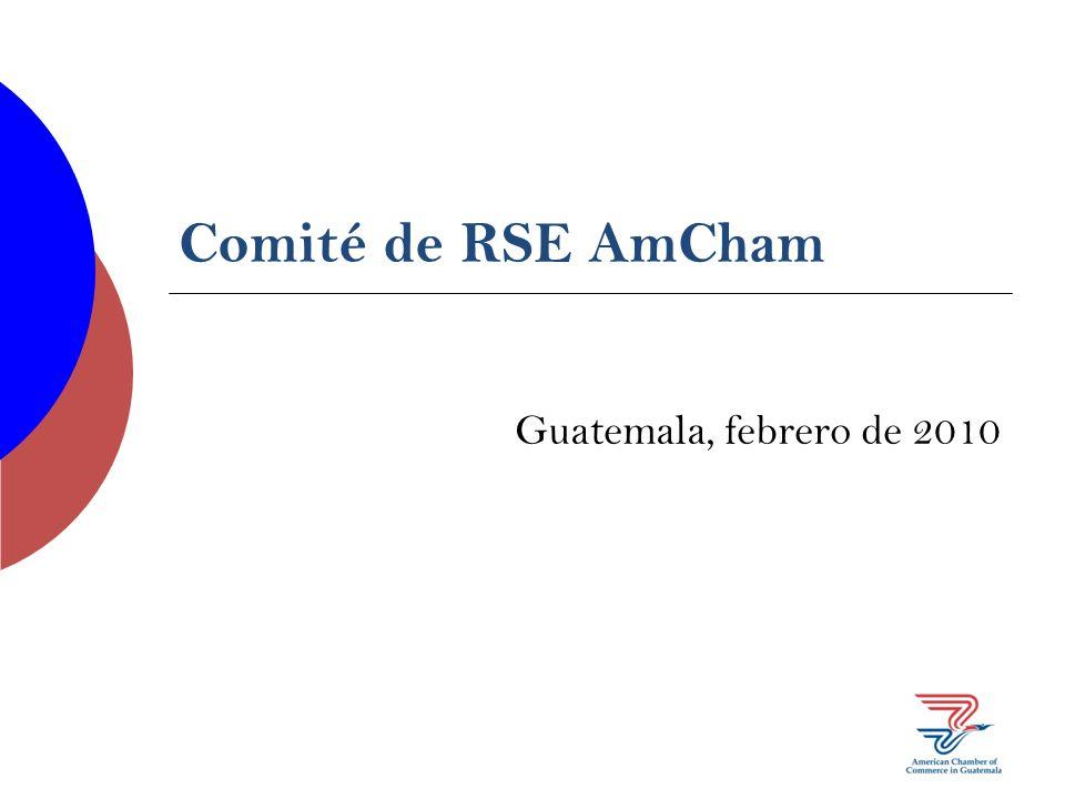 Comité de RSE AmCham Guatemala, febrero de 2010