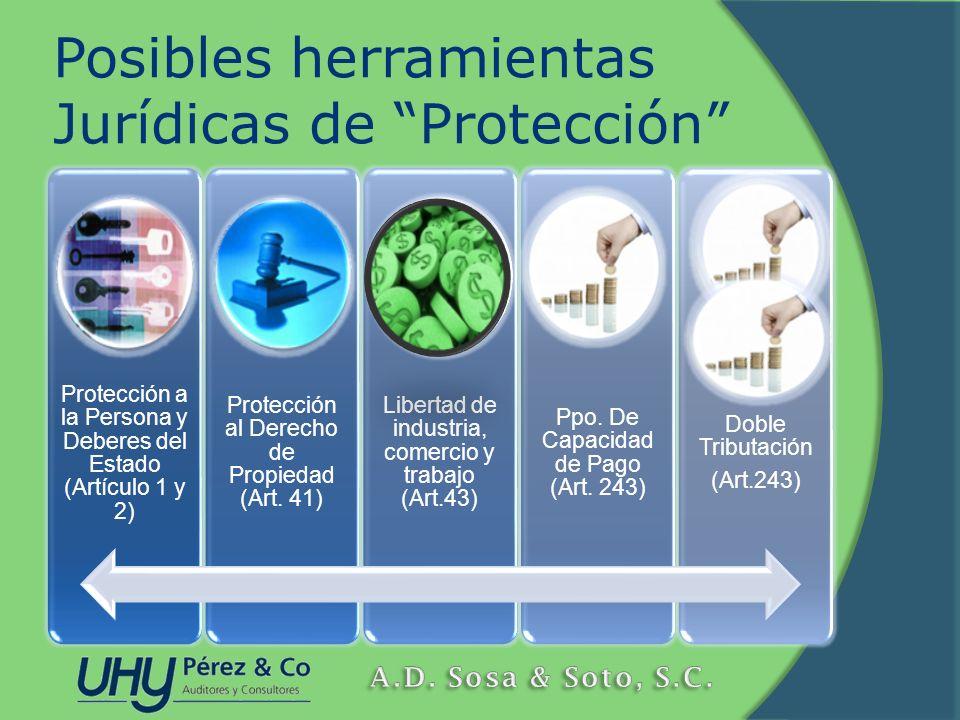 Posibles herramientas Jurídicas de Protección Protección a la Persona y Deberes del Estado (Artículo 1 y 2) Protección al Derecho de Propiedad (Art. 4