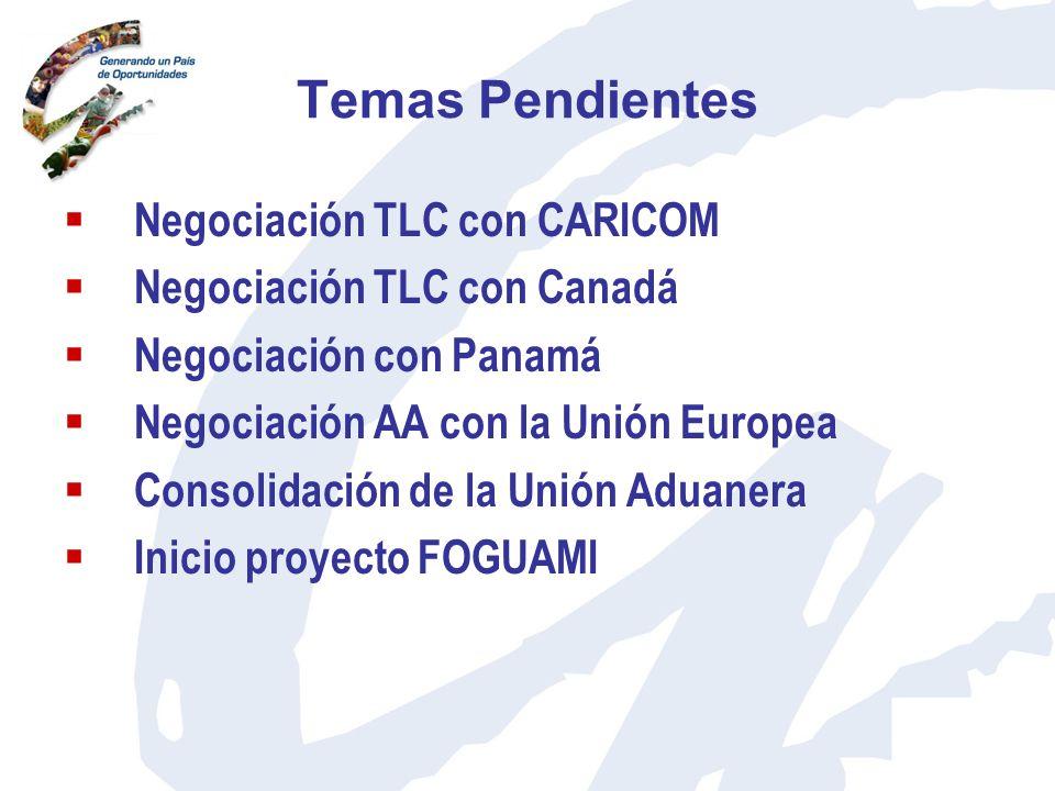 Temas Pendientes Negociación TLC con CARICOM Negociación TLC con Canadá Negociación con Panamá Negociación AA con la Unión Europea Consolidación de la
