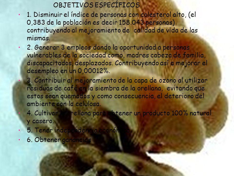COMPORTAMIENTO DEL SECTOR Se encontró como resultado del análisis del sector, dos fuentes de información; la página del DANE(, y la página de la Cámara de Comercio de Bogotá(www.intelexport.com.co/VBeContent/News Detail.asp?ID=5699&IDCompany=20), las cuales presentan datos disímiles, pues muestran la siguiente información: número de empresas colombianas según la primera fuente, 1.683.070, y la segunda 543.393, es decir 1.139.677 empresas marcan la diferencia, por una parte, el censo fue realizado en el año 2005, y por otra, la información de la cámara de comercio es reciente, además las estadísticas muestran que el crecimiento de la creación empresaria en Colombia ha aumentado en un 3,4% por lo tanto existe un segundo error en esta cantidad, pues