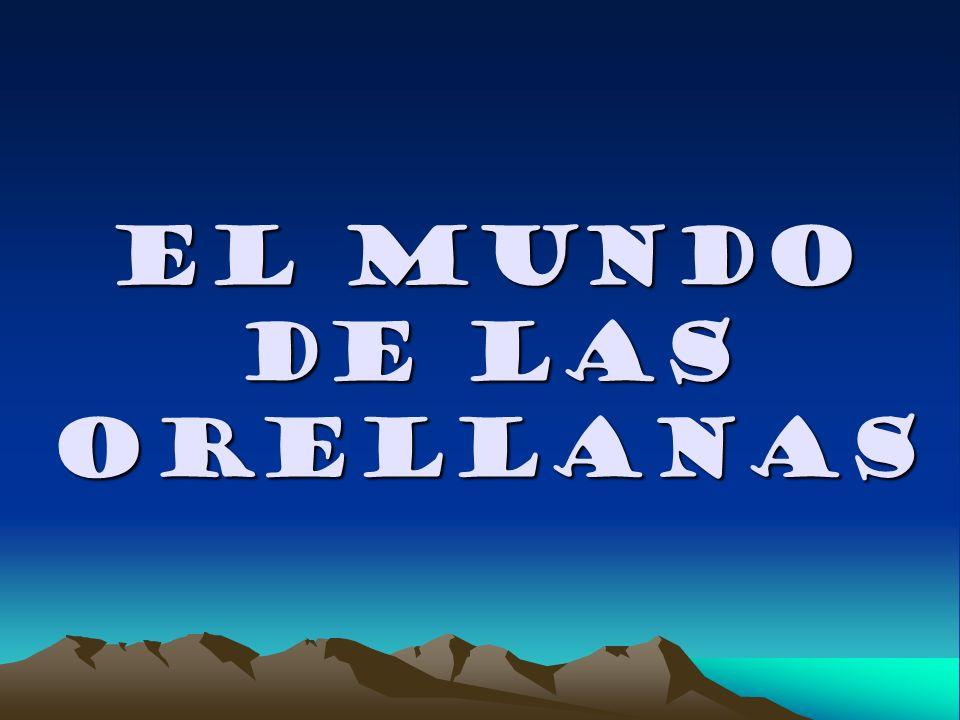 EL MUNDO DE LAS ORELLANAS