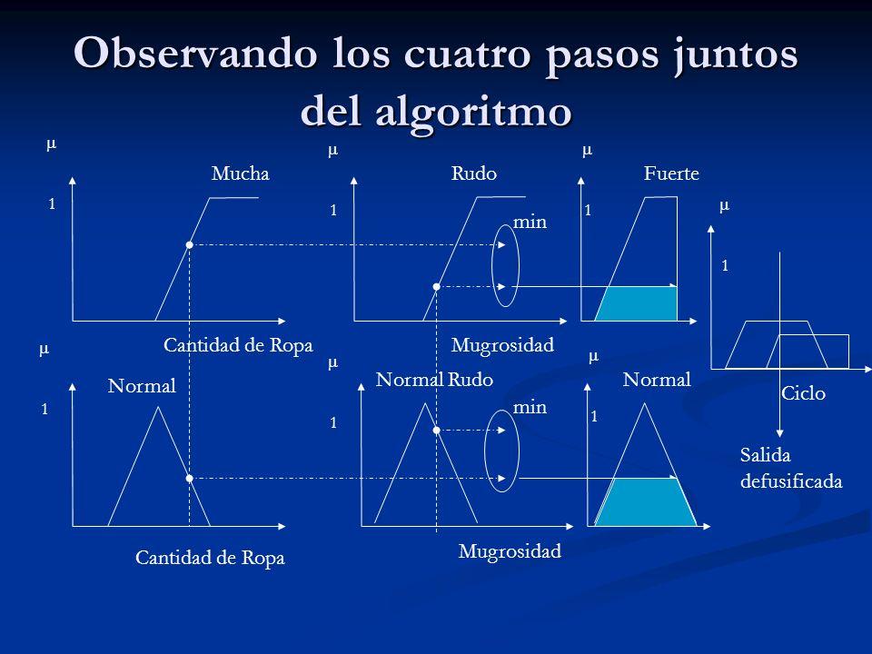 Observando los cuatro pasos juntos del algoritmo MuchaRudo Normal Normal Rudo Cantidad de Ropa Mugrosidad min 1 1 1 1 Fuerte Normal 1 1 Ciclo 1 Salida