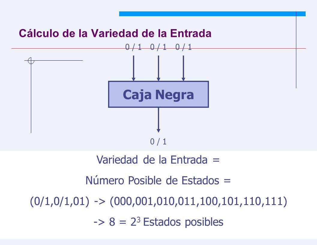 JYS 40 Cálculo de la Variedad de la Entrada Caja Negra 0 / 1 Variedad de la Entrada = Número Posible de Estados = (0/1,0/1,01) -> (000,001,010,011,100,101,110,111) -> 8 = 2 3 Estados posibles