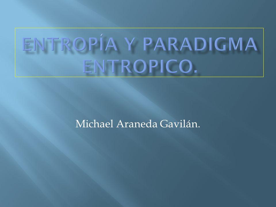 Michael Araneda Gavilán.