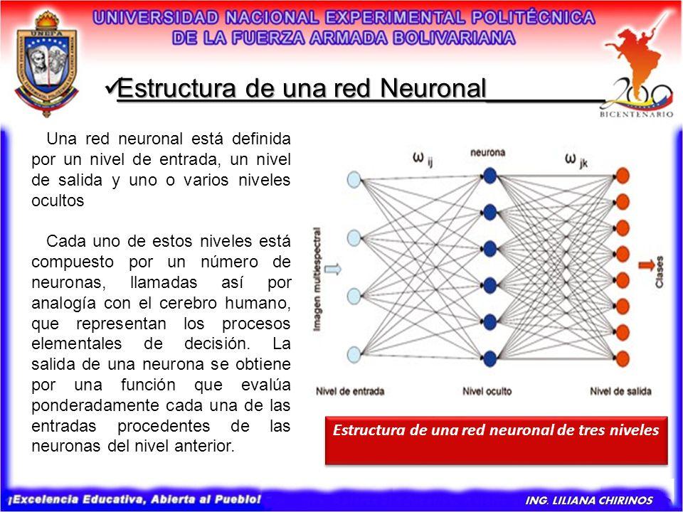 Estructura de una red Neuronal________ Estructura de una red Neuronal________ Una red neuronal está definida por un nivel de entrada, un nivel de sali