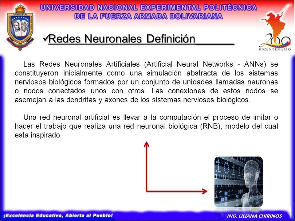 Redes Neuronales Definición Redes Neuronales Definición______ El cerebro humano promedio cuenta con aproximadamente mil millones de neuronas.