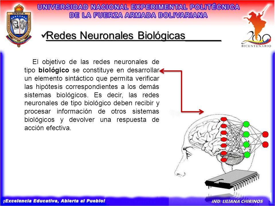 El objetivo de las redes neuronales de tipo biológico se constituye en desarrollar un elemento sintáctico que permita verificar las hipótesis correspo