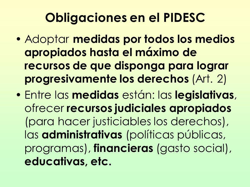 Obligaciones en el PIDESC Adoptar medidas por todos los medios apropiados hasta el máximo de recursos de que disponga para lograr progresivamente los