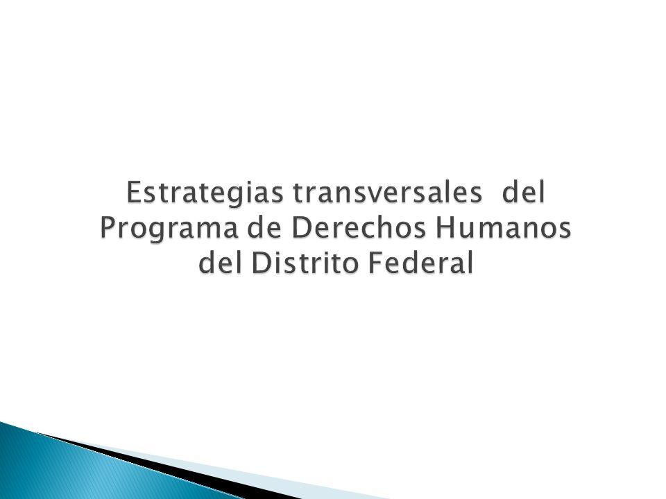 El Programa de Derechos Humanos señala 9 estrategias transversales que se consideran deben ser el fundamento de las políticas públicas desde su concepción, diseño, implementación y evaluación.