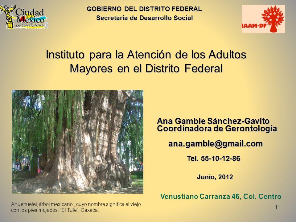 1 GOBIERNO DEL DISTRITO FEDERAL Secretaría de Desarrollo Social Instituto para la Atención de los Adultos Mayores en el Distrito Federal Ana Gamble Sá