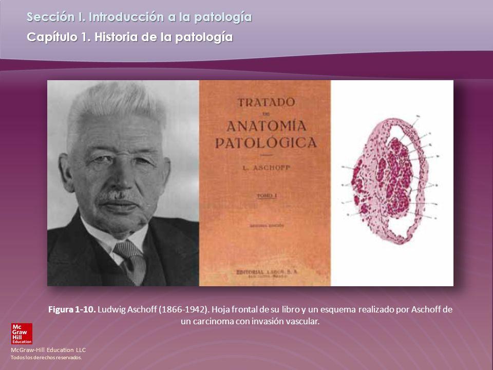 McGraw-Hill Education LLC Todos los derechos reservados. Capítulo 1. Historia de la patología Sección I. Introducción a la patología Figura 1-10. Ludw