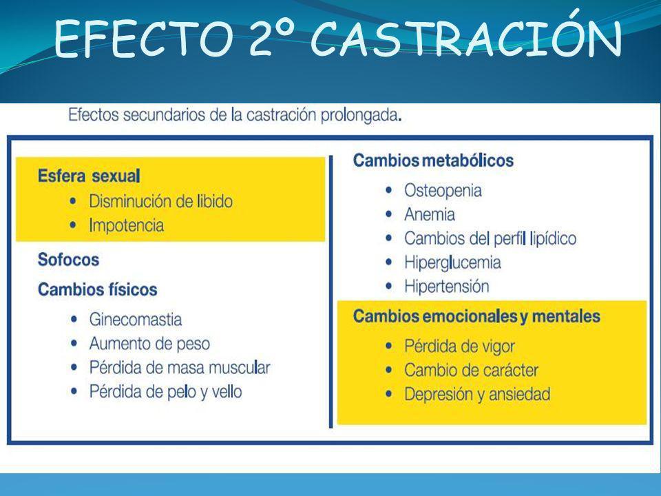 EFECTO 2º CASTRACIÓN