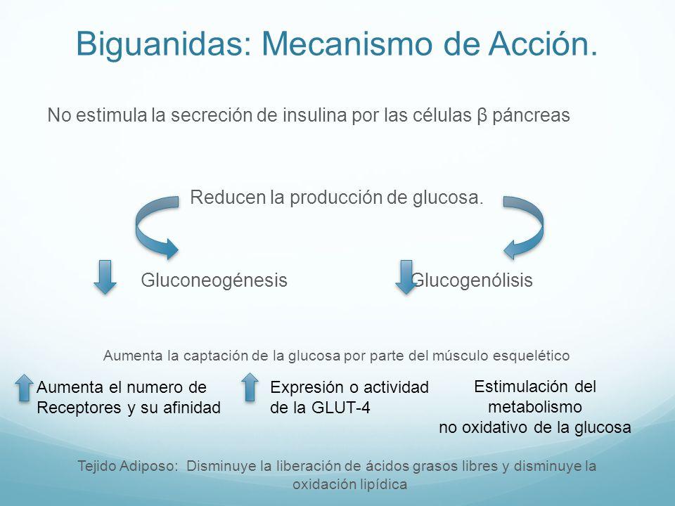 Biguanidas: Mecanismo de Acción. No estimula la secreción de insulina por las células β páncreas Reducen la producción de glucosa. Gluconeogénesis Glu