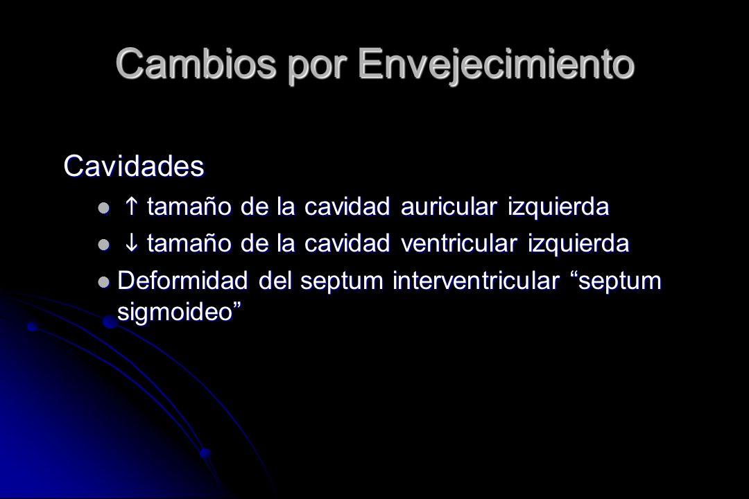 Cambios por Envejecimiento Cavidades tamaño de la cavidad auricular izquierda tamaño de la cavidad auricular izquierda tamaño de la cavidad ventricula