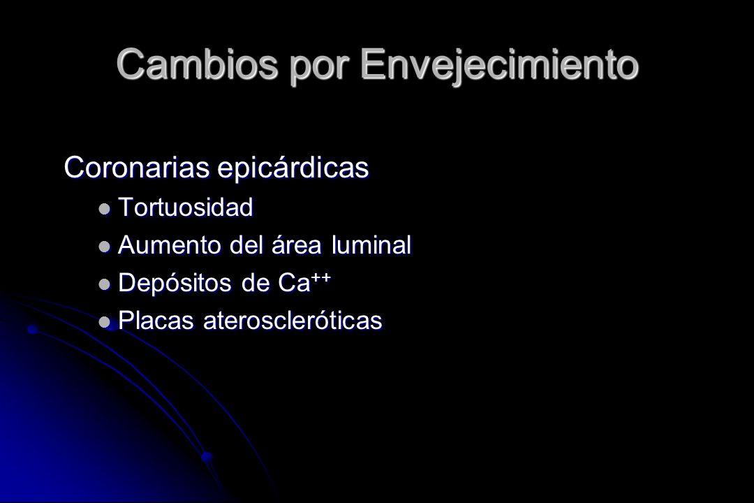 Coronarias epicárdicas Tortuosidad Tortuosidad Aumento del área luminal Aumento del área luminal Depósitos de Ca ++ Depósitos de Ca ++ Placas ateroscl