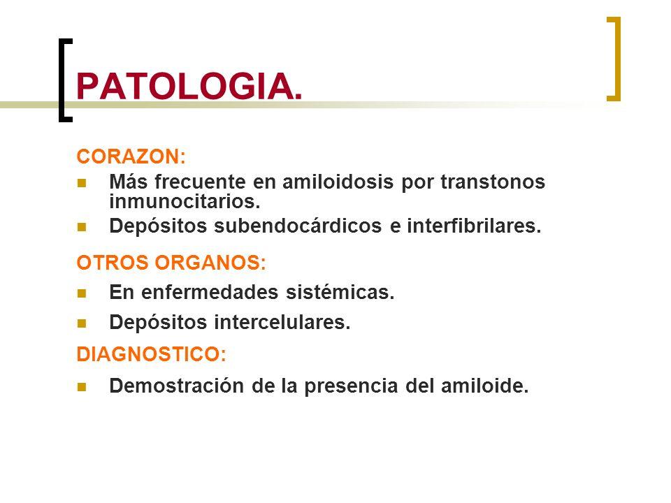 PATOLOGIA. CORAZON: Más frecuente en amiloidosis por transtonos inmunocitarios. Depósitos subendocárdicos e interfibrilares. OTROS ORGANOS: En enferme