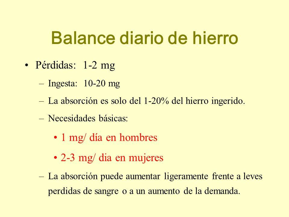 Pérdidas: 1-2 mg –Ingesta: 10-20 mg –La absorción es solo del 1-20% del hierro ingerido. –Necesidades básicas: 1 mg/ día en hombres 2-3 mg/ dia en muj
