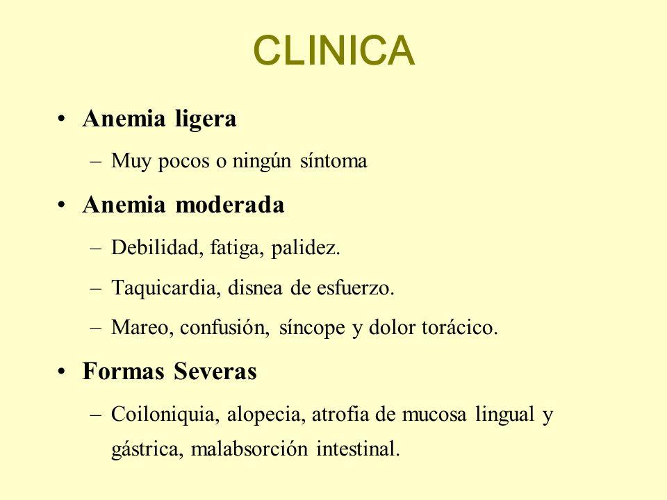CLINICA Anemia ligera –Muy pocos o ningún síntoma Anemia moderada –Debilidad, fatiga, palidez. –Taquicardia, disnea de esfuerzo. –Mareo, confusión, sí
