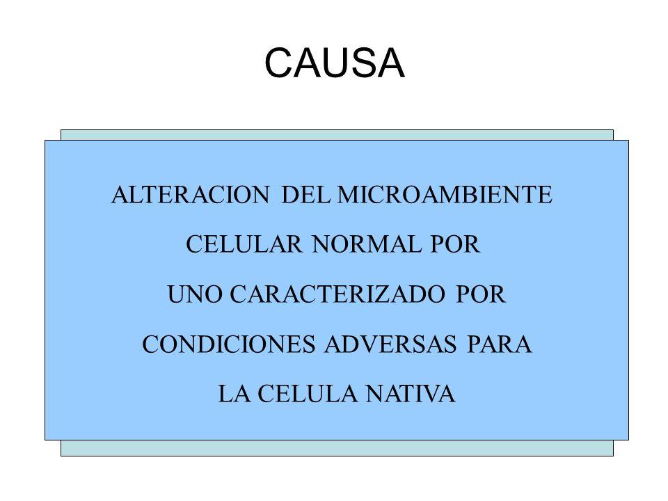 CAUSA ALTERACION DEL MICROAMBIENTE CELULAR NORMAL POR UNO CARACTERIZADO POR CONDICIONES ADVERSAS PARA LA CELULA NATIVA