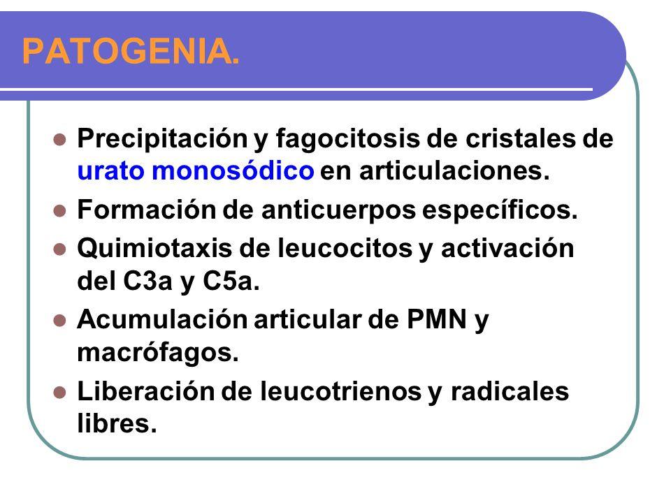 PATOGENIA.Precipitación y fagocitosis de cristales de urato monosódico en articulaciones.