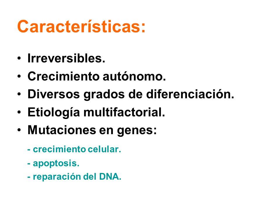 Características: Irreversibles. Crecimiento autónomo. Diversos grados de diferenciación. Etiología multifactorial. Mutaciones en genes: - crecimiento