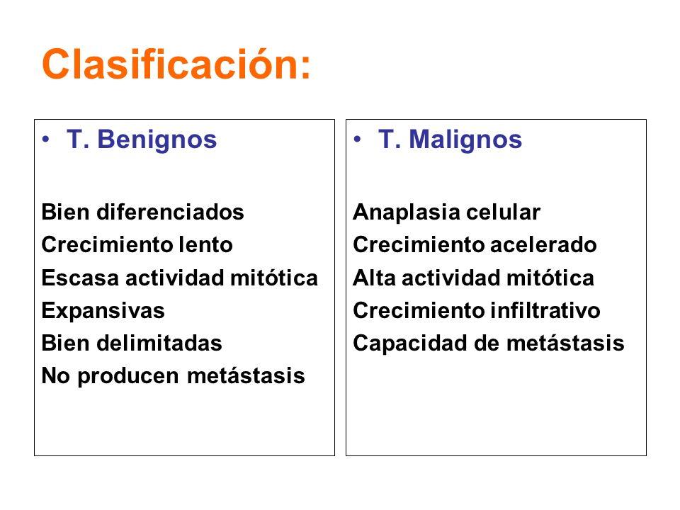 Clasificación: T. Benignos Bien diferenciados Crecimiento lento Escasa actividad mitótica Expansivas Bien delimitadas No producen metástasis T. Malign
