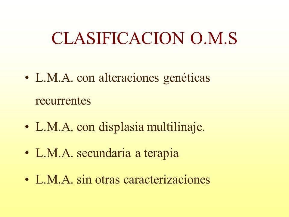 CLASIFICACION O.M.S L.M.A. con alteraciones genéticas recurrentes L.M.A. con displasia multilinaje. L.M.A. secundaria a terapia L.M.A. sin otras carac