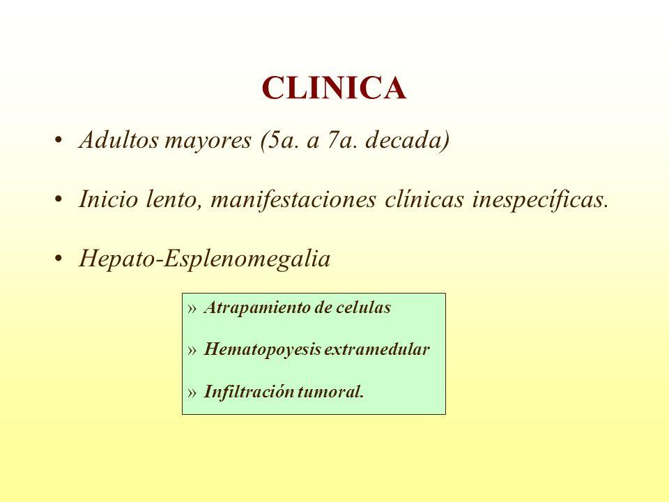 Adultos mayores (5a. a 7a. decada) Inicio lento, manifestaciones clínicas inespecíficas. Hepato-Esplenomegalia »Atrapamiento de celulas »Hematopoyesis