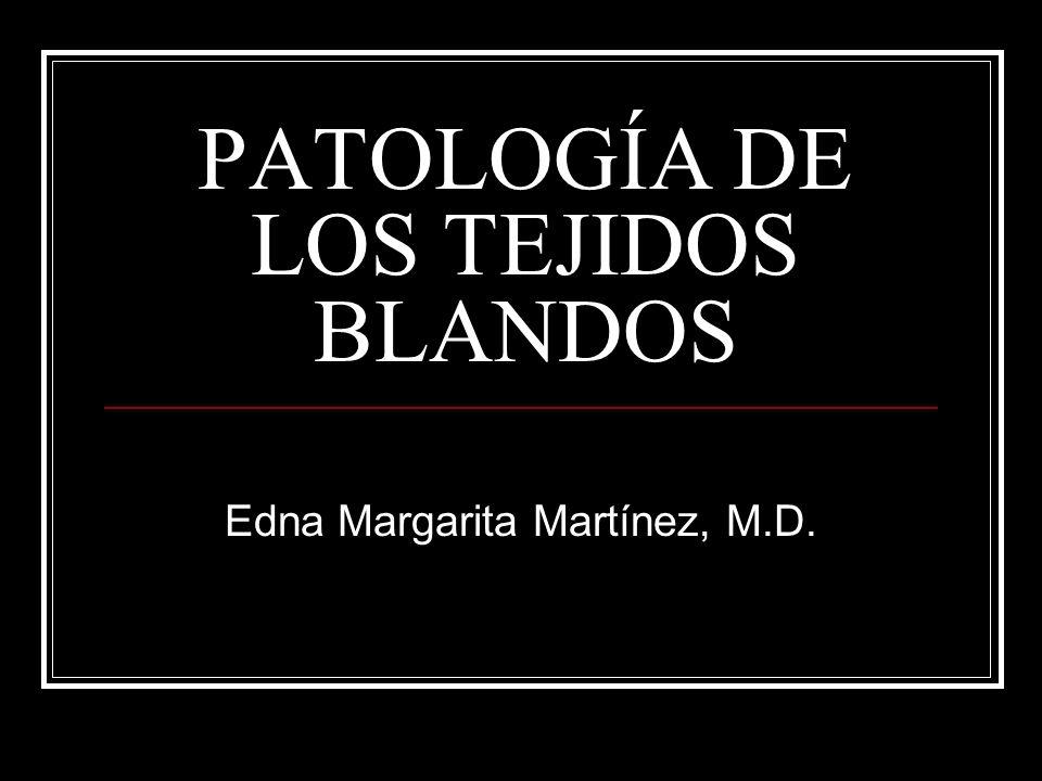 PATOLOGÍA DE LOS TEJIDOS BLANDOS Edna Margarita Martínez, M.D.