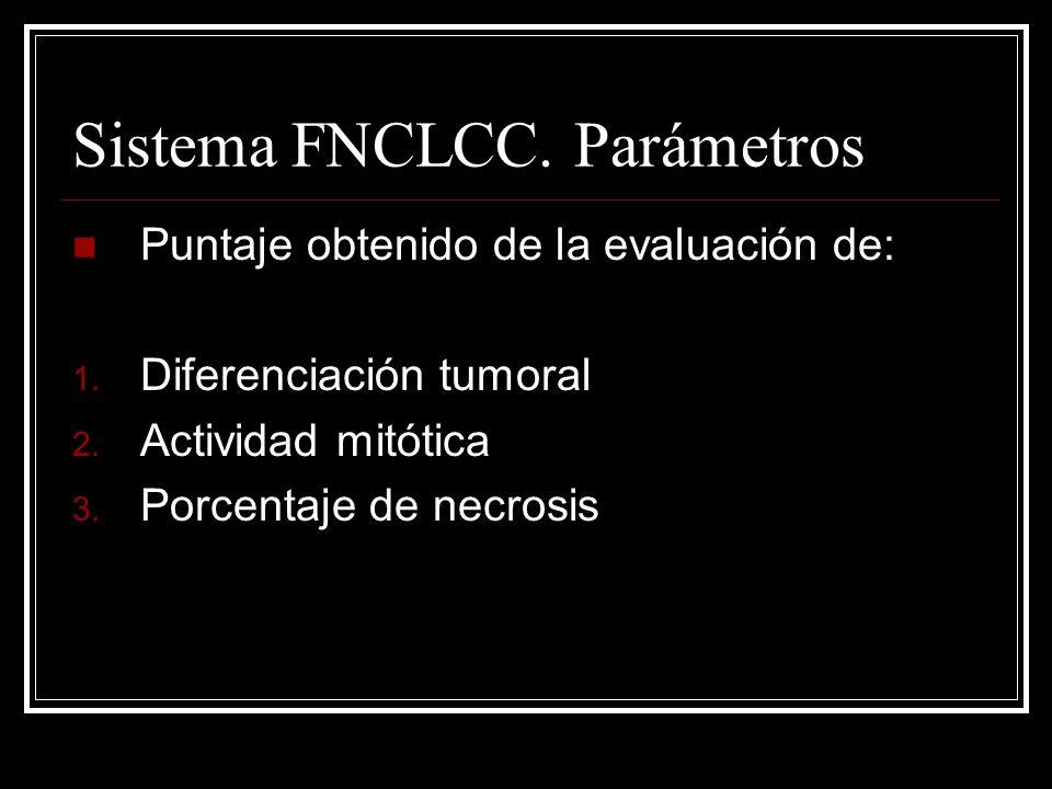 Sistema FNCLCC. Parámetros Puntaje obtenido de la evaluación de: 1. Diferenciación tumoral 2. Actividad mitótica 3. Porcentaje de necrosis