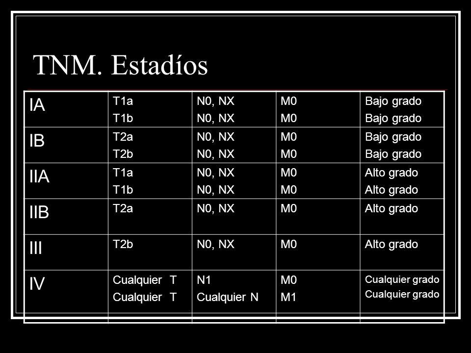 TNM. Estadíos IA T1a T1b N0, NX M0 Bajo grado IB T2a T2b N0, NX M0 Bajo grado IIA T1a T1b N0, NX M0 Alto grado IIB T2aN0, NXM0Alto grado III T2bN0, NX