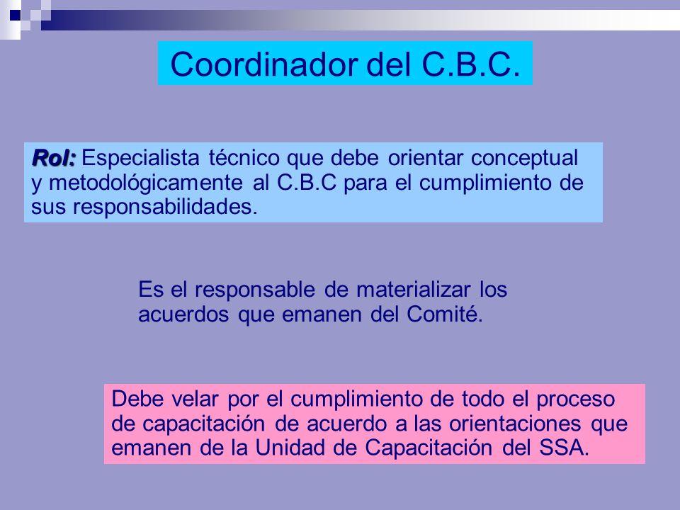 Rol: Rol: Especialista técnico que debe orientar conceptual y metodológicamente al C.B.C para el cumplimiento de sus responsabilidades. Es el responsa