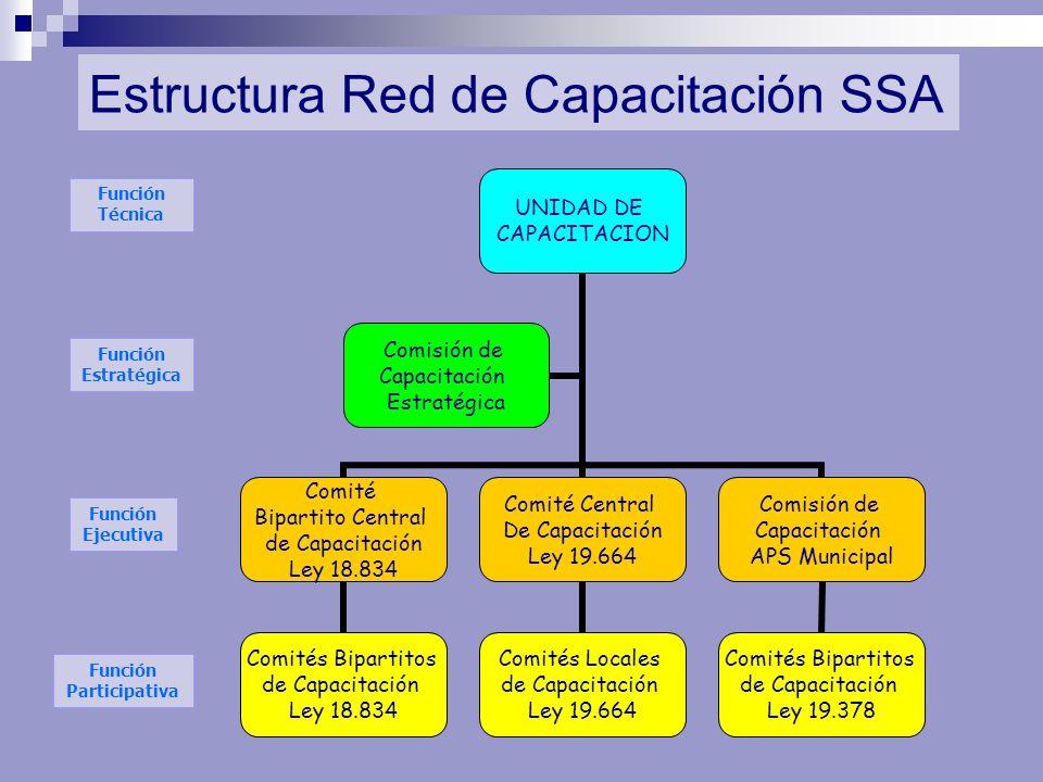 Estructura Red de Capacitación SSA Función Estratégica Función Ejecutiva Función Participativa UNIDAD DE CAPACITACION Comité Bipartito Central de Capa