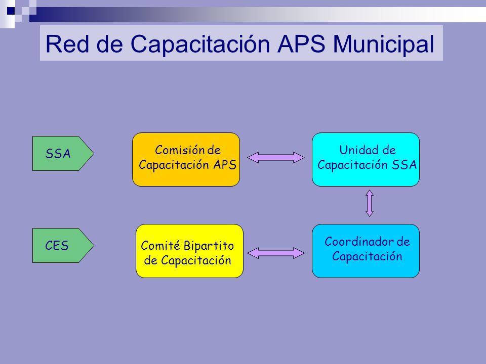 Red de Capacitación APS Municipal Comisión de Capacitación APS Coordinador de Capacitación Unidad de Capacitación SSA Comité Bipartito de Capacitación