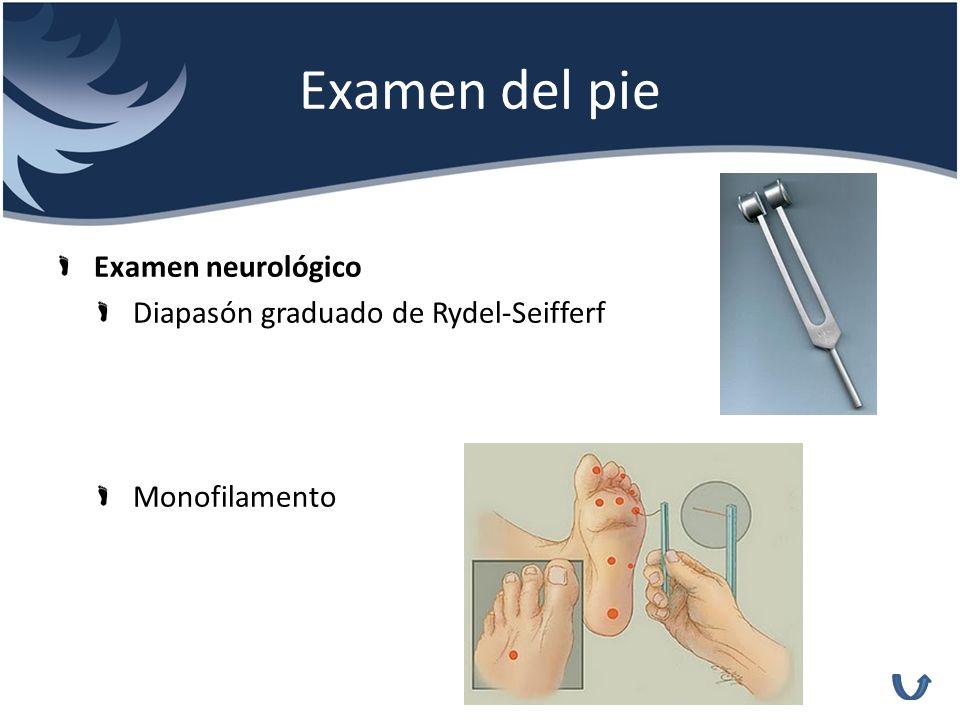 Examen del pie Examen neurológico Diapasón graduado de Rydel-Seifferf Monofilamento