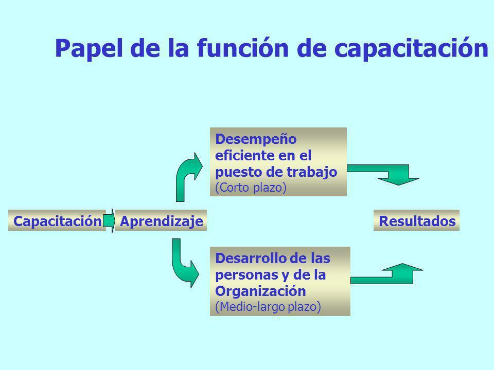 Desempeño y Competencias Competencias Básicas Competencias Técnicas (Específicas) Competencias Transversales Desempeño Leer Escribir Habilidades Numér