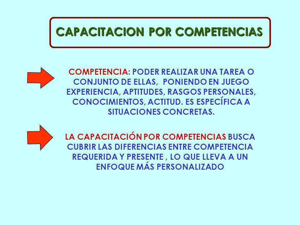 COMPETENCIAS APORTE INDIVIDUAL RESOL. PROBL APORTE EQUIPO