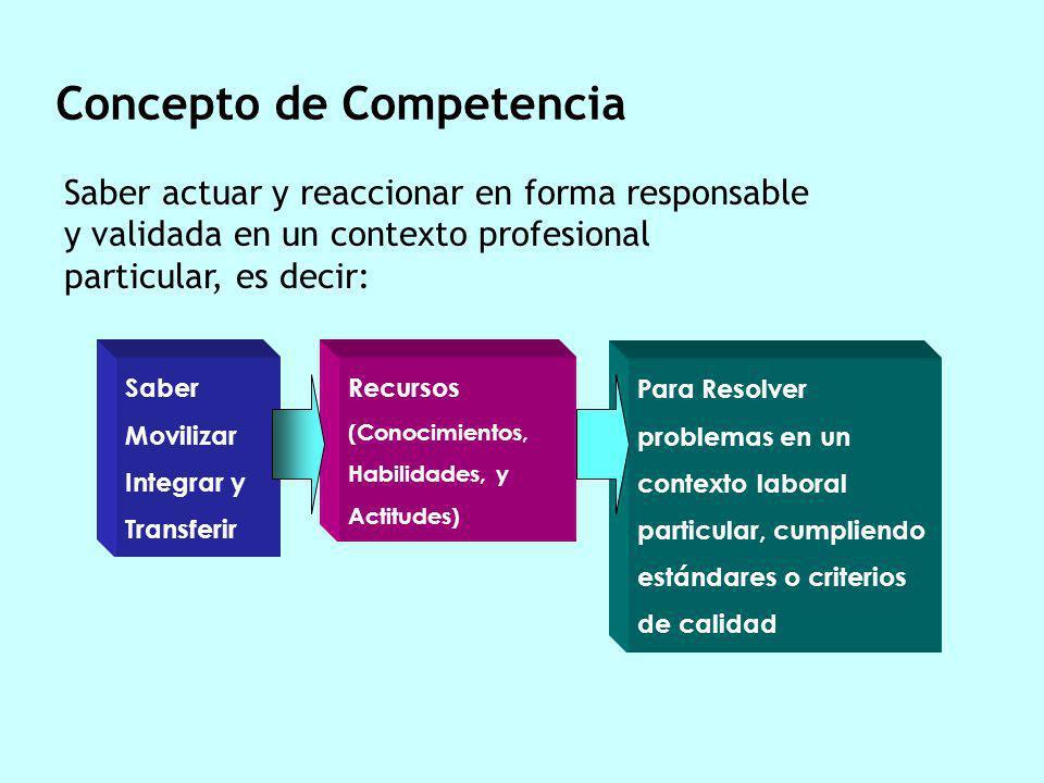 Un saber hacer o un saber actuar en forma responsable y validada en un contexto profesional particular, combinando y movilizando recursos necesarios (