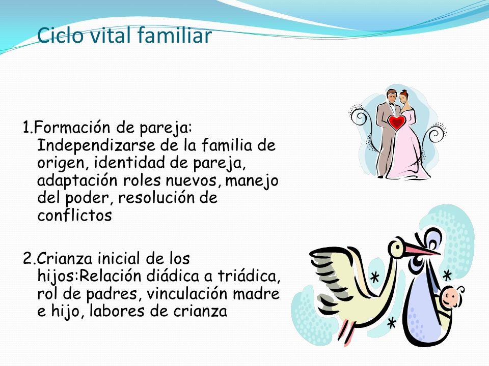 Ciclo vital familiar 1.Formación de pareja: Independizarse de la familia de origen, identidad de pareja, adaptación roles nuevos, manejo del poder, re