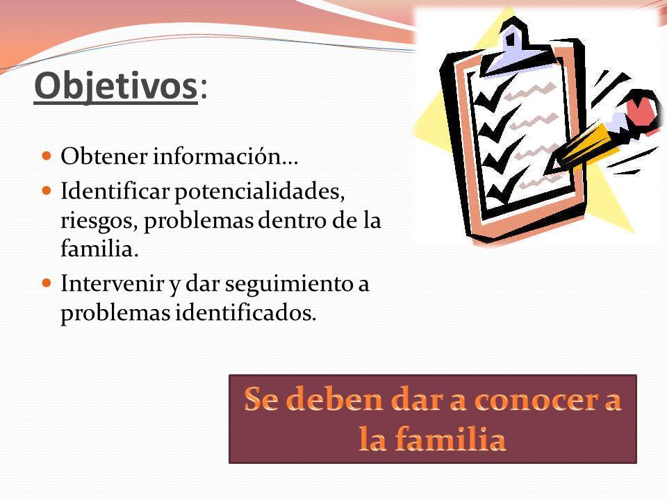 Objetivos: Obtener información… Identificar potencialidades, riesgos, problemas dentro de la familia. Intervenir y dar seguimiento a problemas identif