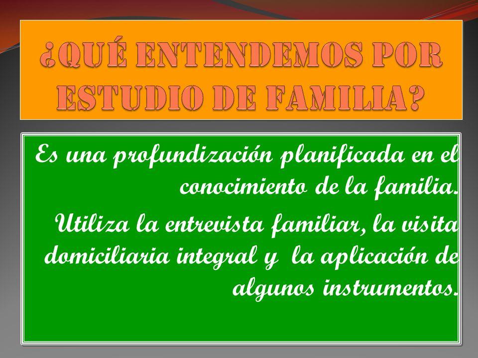 Es una profundización planificada en el conocimiento de la familia. Utiliza la entrevista familiar, la visita domiciliaria integral y la aplicación de