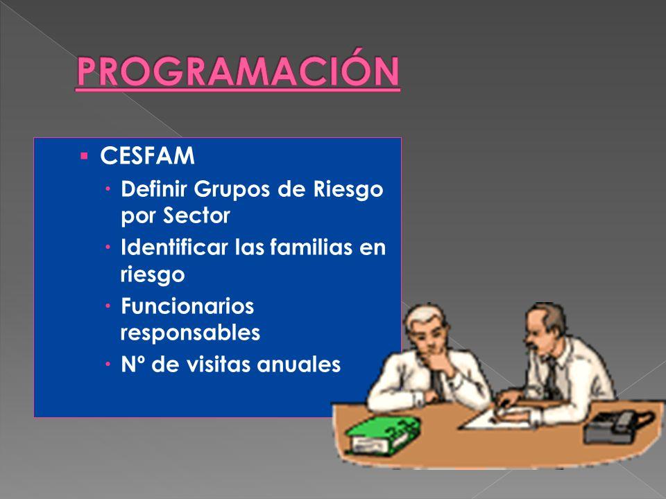 CESFAM Definir Grupos de Riesgo por Sector Identificar las familias en riesgo Funcionarios responsables Nº de visitas anuales