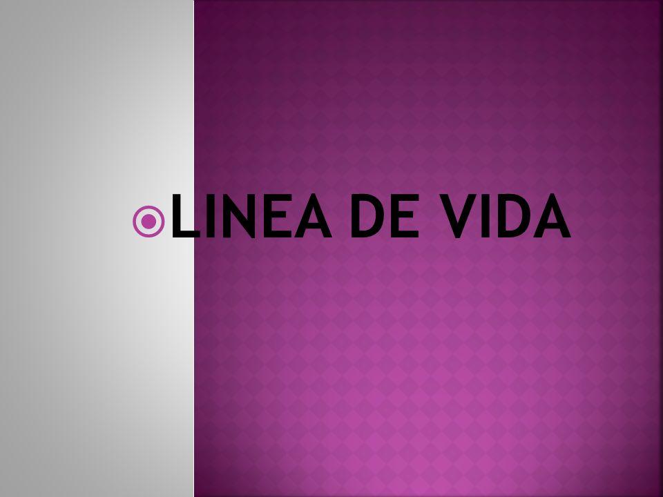 LINEA DE VIDA