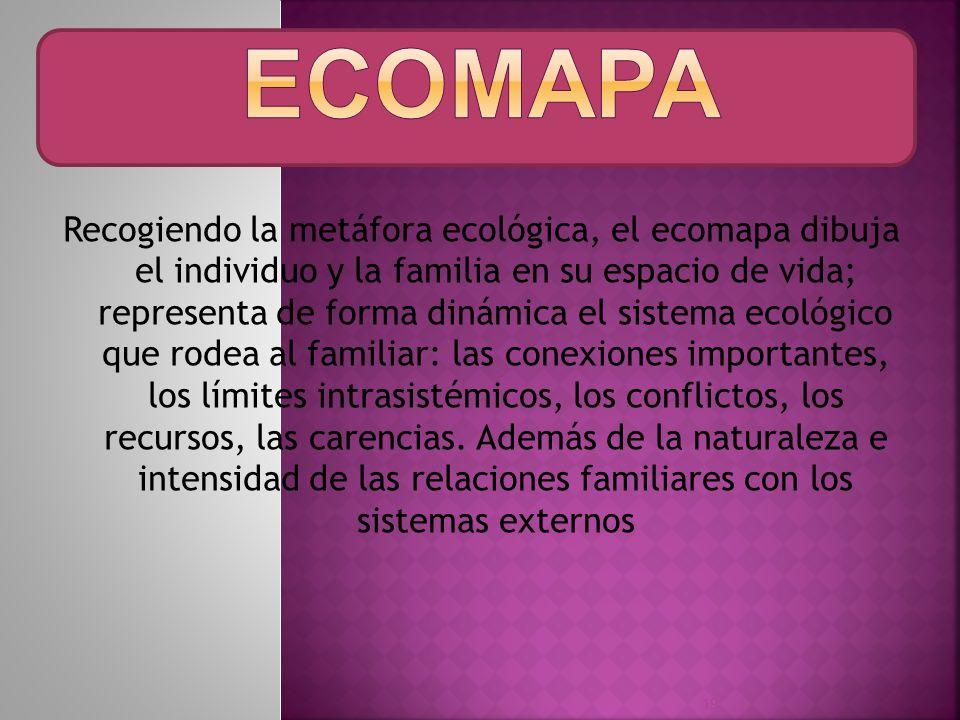 Recogiendo la metáfora ecológica, el ecomapa dibuja el individuo y la familia en su espacio de vida; representa de forma dinámica el sistema ecológico