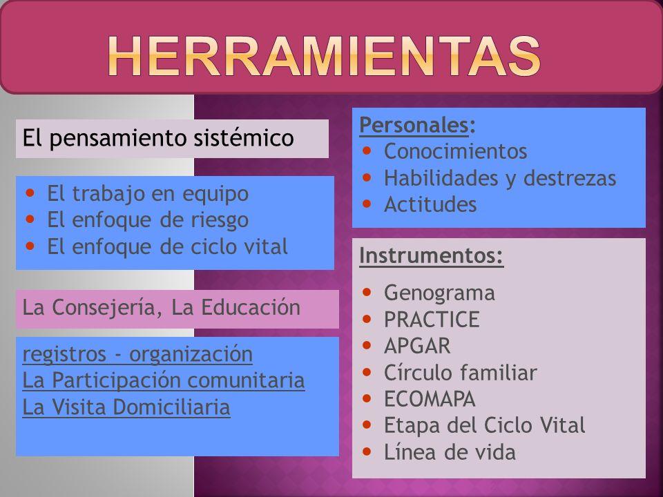 El pensamiento sistémico 2 El trabajo en equipo El enfoque de riesgo El enfoque de ciclo vital La Consejería, La Educación Personales: Conocimientos H