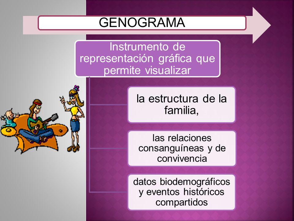información familiar de tres generaciones en seis categorías específicas: Estructura familiar Estadio del ciclo de vida Patrón de repetición a través de las generaciones Eventos de la vida y funcionamiento familiar Patrones de relación y triángulos Equilibrio y desequilibrio familiar