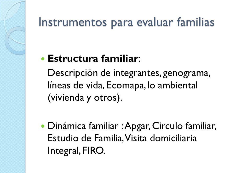 INSTRUMENTOS DE SALUD FAMILIAR Klgo. Ricardo Jara Garrido