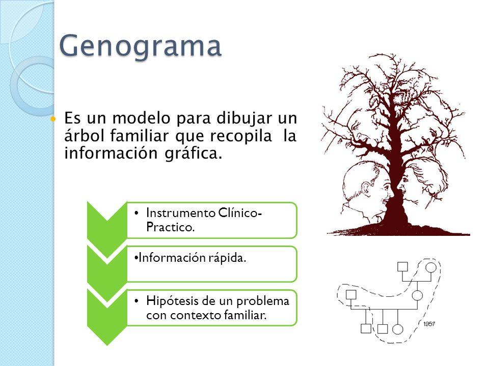 Instrumentos para evaluar familias Estructura familiar: Descripción de integrantes, genograma, líneas de vida, Ecomapa, lo ambiental (vivienda y otros