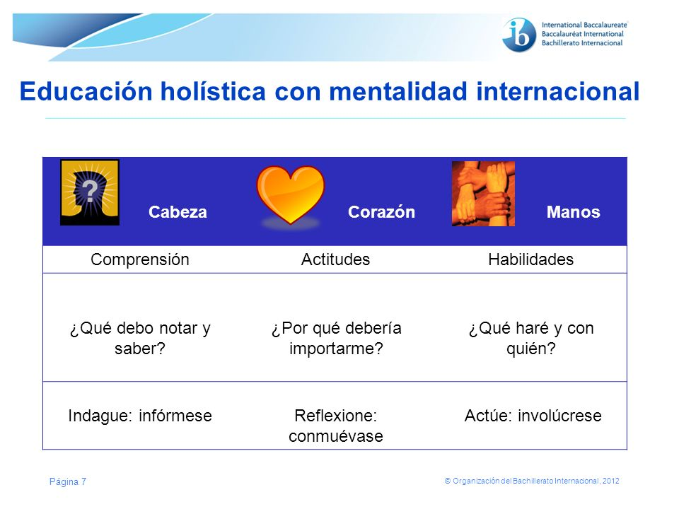 © Organización del Bachillerato Internacional, 2012 Educación holística con mentalidad internacional Cabeza Corazón Manos ComprensiónActitudesHabilida