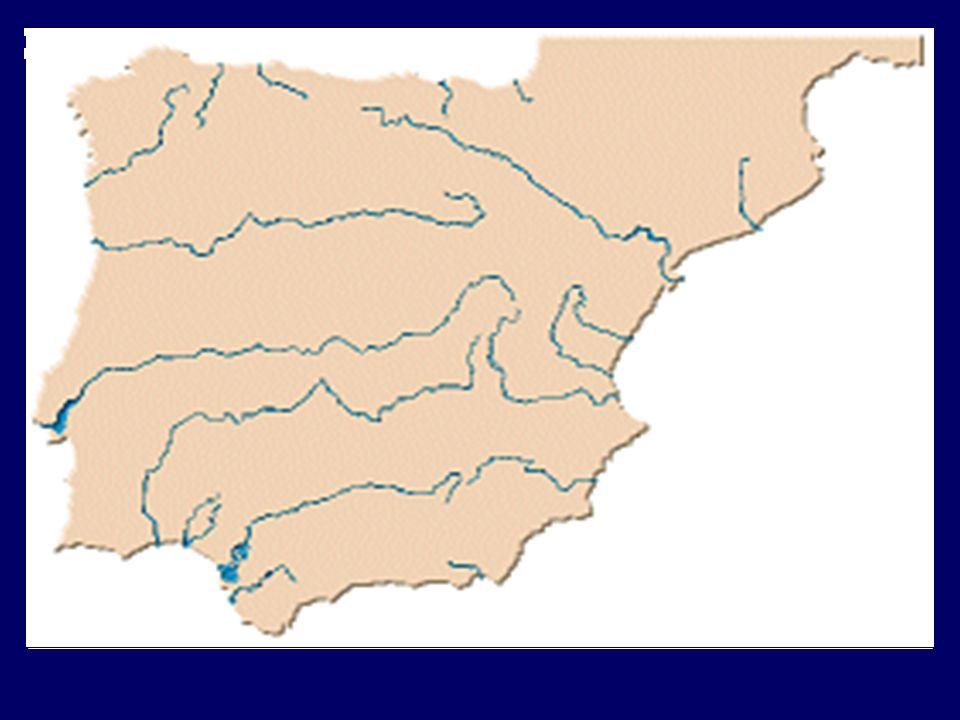 España – Ríos - Vertientes Cantábrica Cortos y de gran caudal Destacan Navia Nalón Eo Bidasoa Mediterránea Cortos y de poco caudal Destacan Ebro Turia